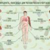 kakie-produkty-samye-poleznye-dlya-organizma-cheloveka